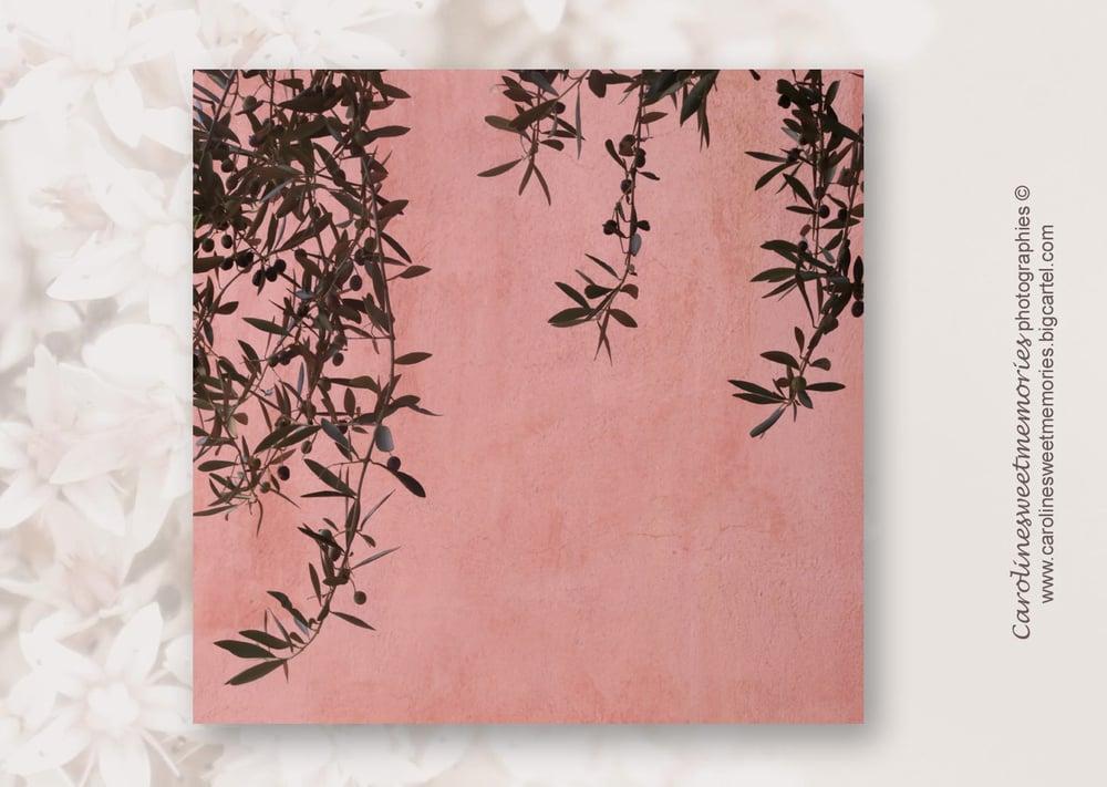 Image of Le mur rose | TIRAGE PHOTO