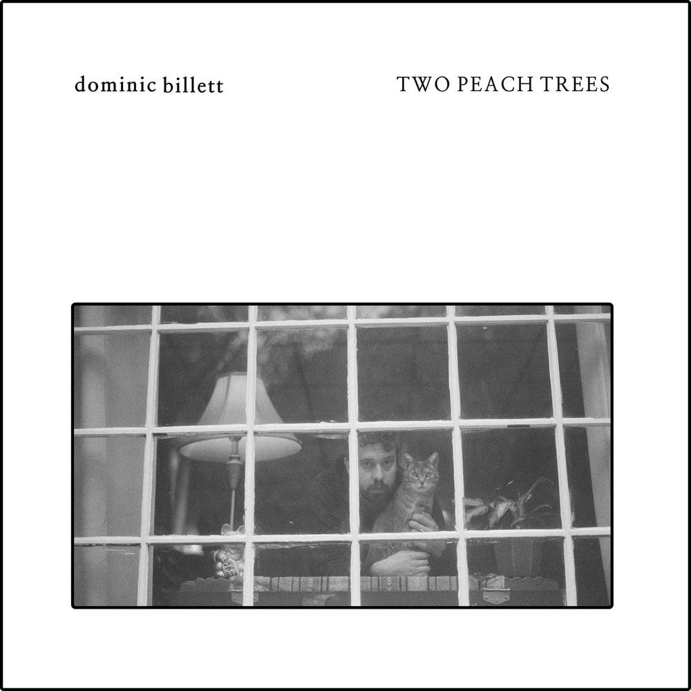 """""""Two Peach Trees"""" Cassette by Dominic Billett"""