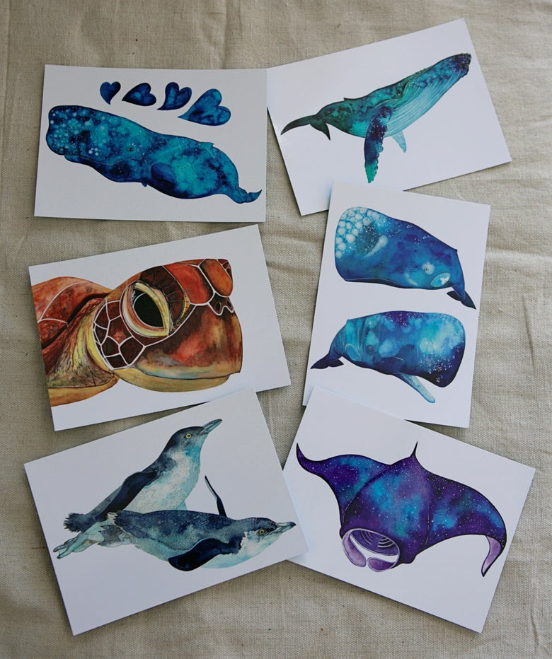 Image of Postcard Set - Ocean Critters