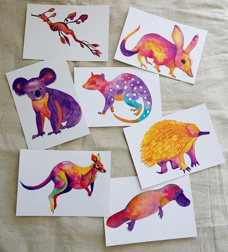 Image of Postcard Set - Australian Animals