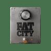 Fat City Fuzz