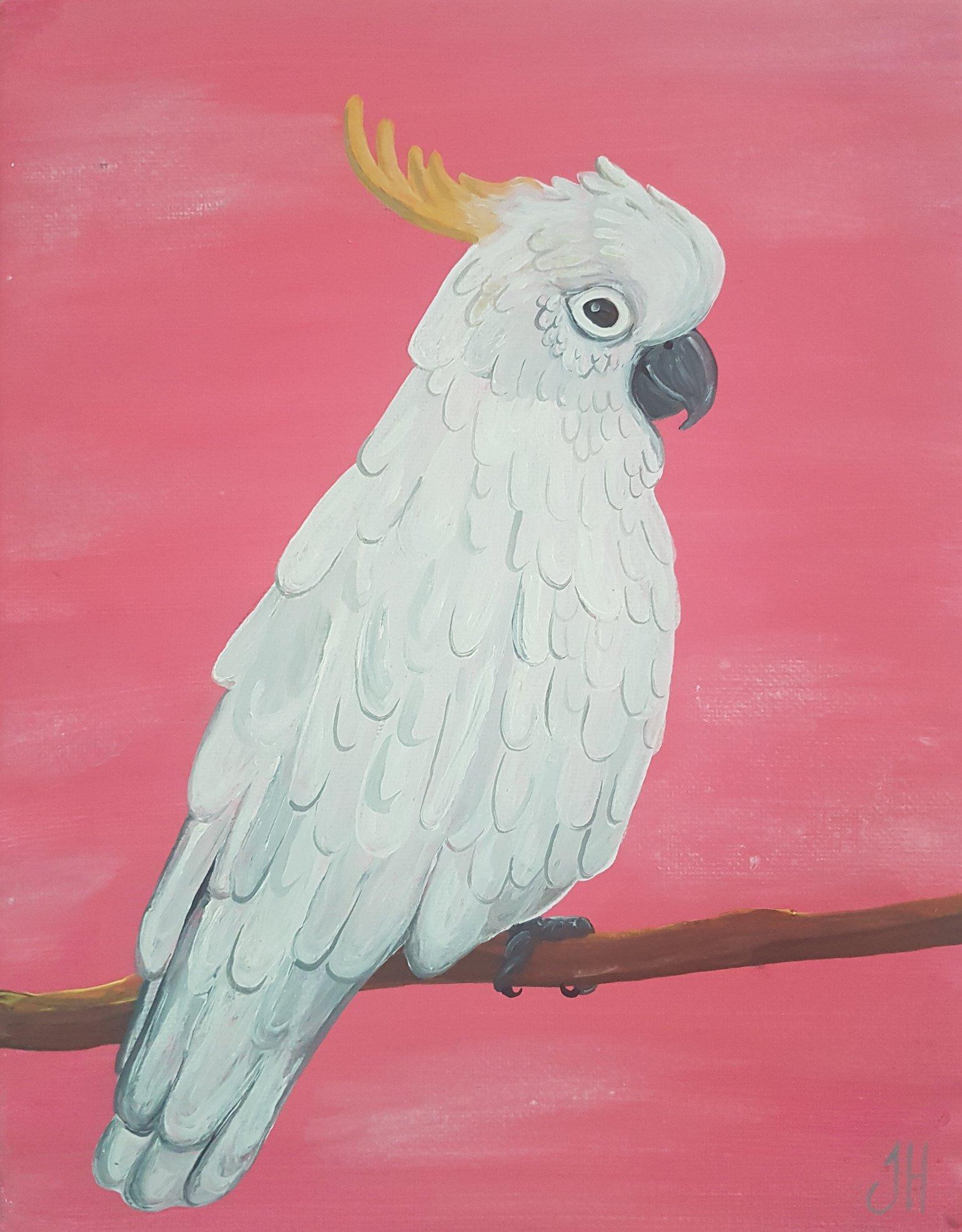 Image of Sulphur Crested Cockatoo Original Painting