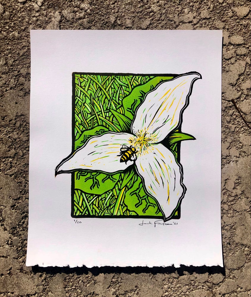 Image of Great White Trillium print