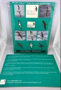 Shearwaters Collectors Card - 6 Pins - Scilly Pelagics