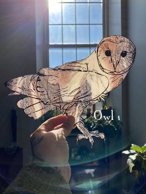 Image of Marbled Acrylic Barn Owl - Group 1