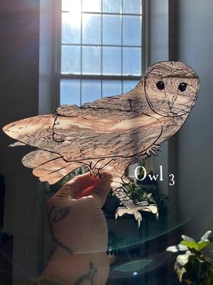 Image of Marbled Acrylic Barn Owl - Group 2