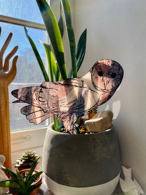 Image of Marbled Acrylic Barn Owl - Group 3