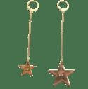 Boucle d'oreille Longue Etoile // Long Star Earring