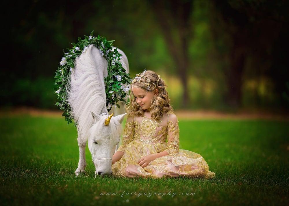 Image of Unicorn Sessions