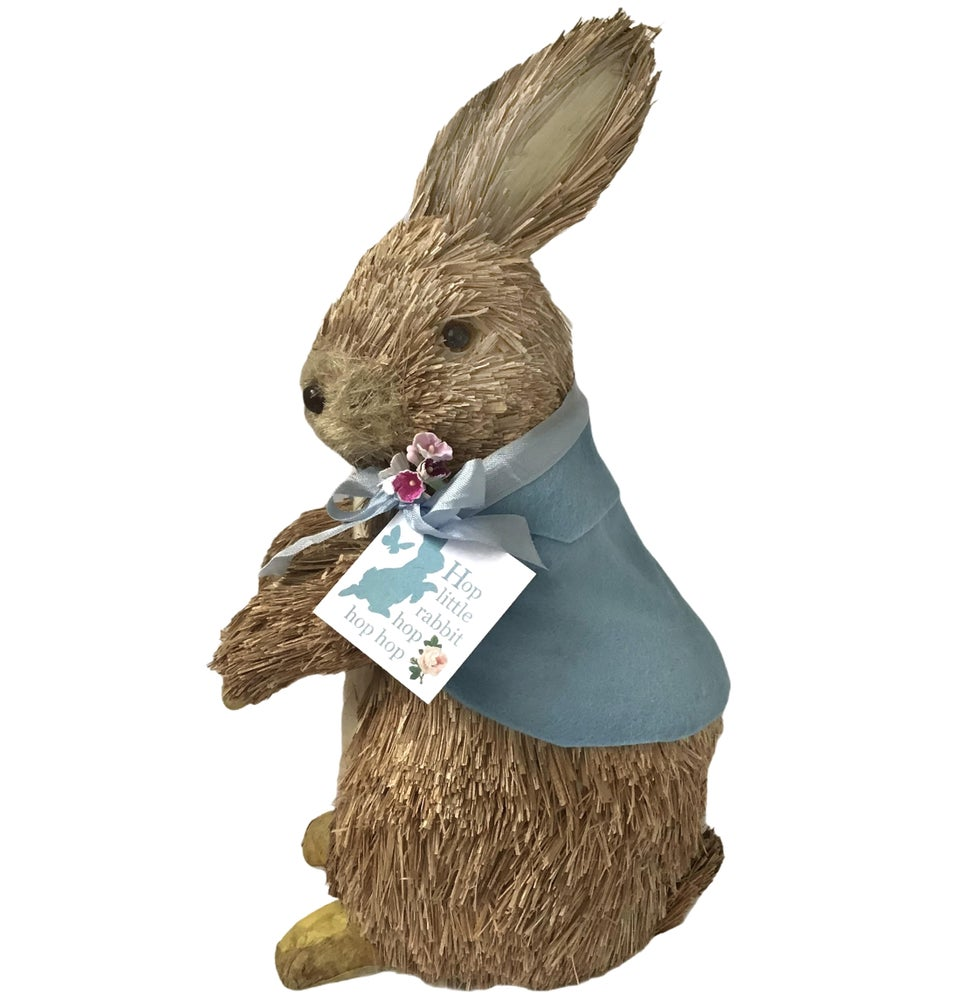 Image of Peter Rabbit Bristle Bunny