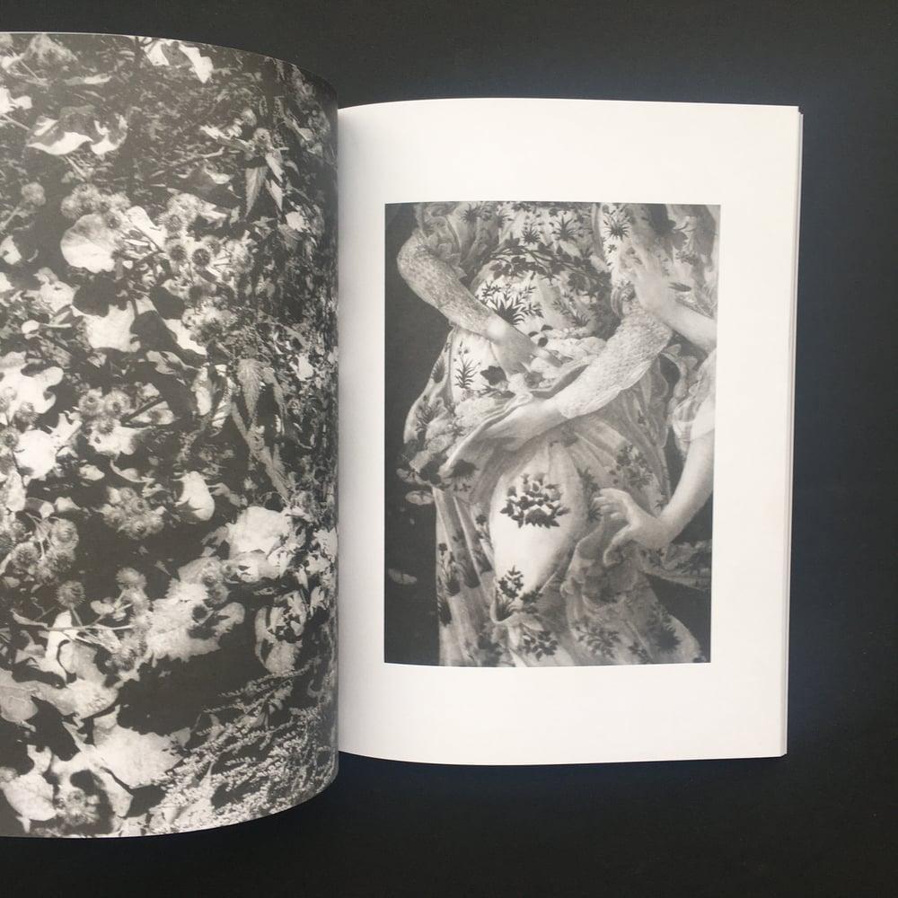 Plant volatiles - Jochen Lempert