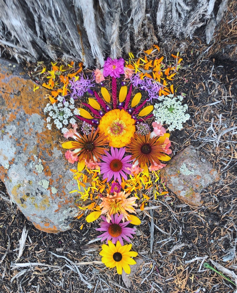 Image of flower medicine workshop: a journey into the healing magic of flowers