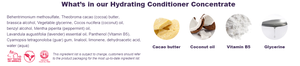 Ethique Hydrating Conditioner Concentrate