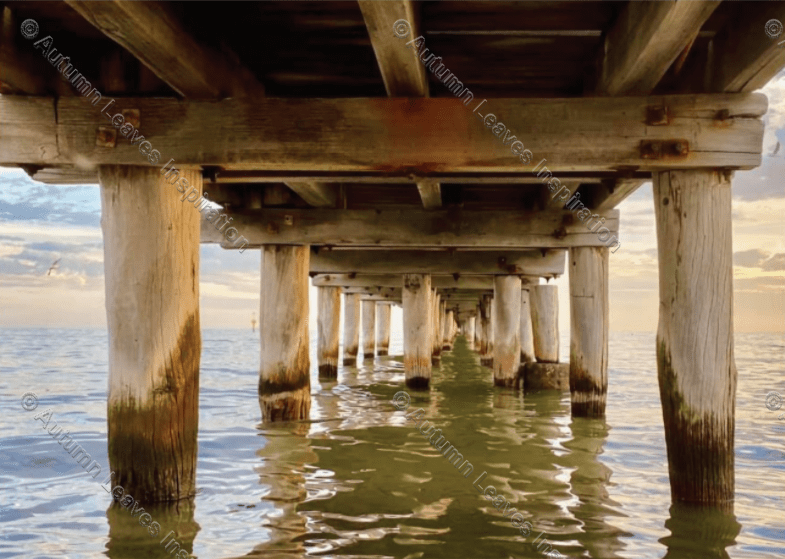 Image of T32 Altona Beach Pier - NEW!