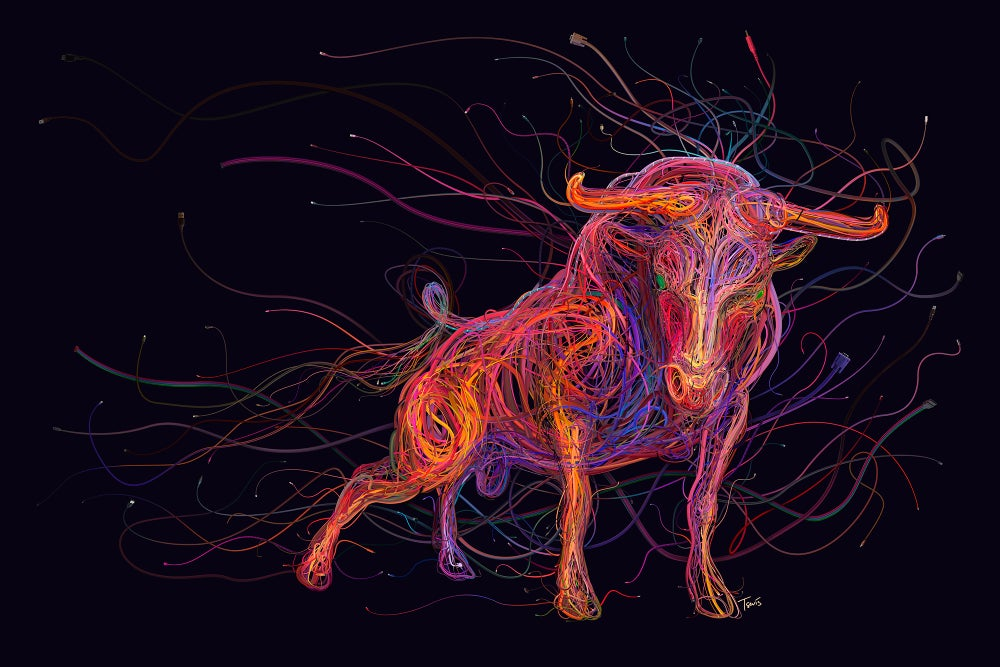 Image of The wired bull