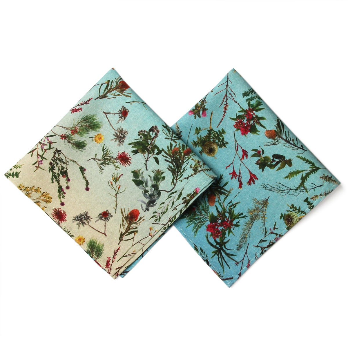 Image of NAPKIN SET OF TWO FALLEN FRUIT NATIVE PLANTS BLUE