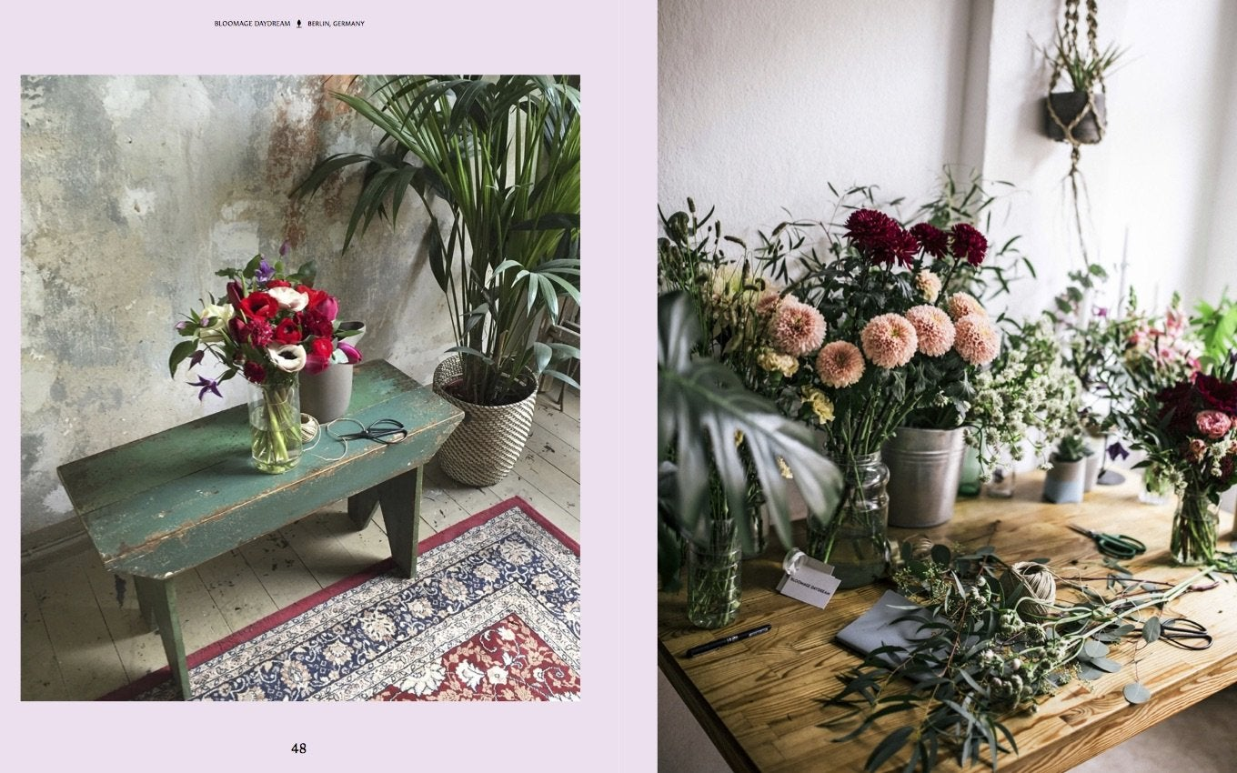 Image of Evergreen: Living with Plants