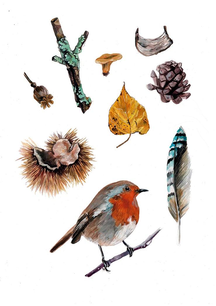 Curiosities ( Autumn textures)