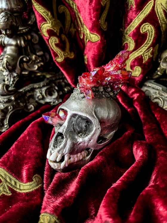 Image of Red Cactus Quartz & Pyrite Embellished- Vervet Monkey Skull