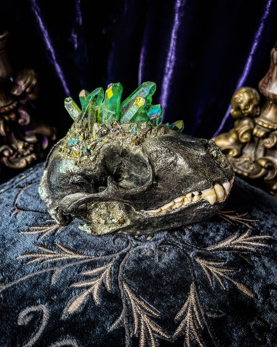 Image of Chalcopyrite & Green Aura Quartz - Raccoon Skull