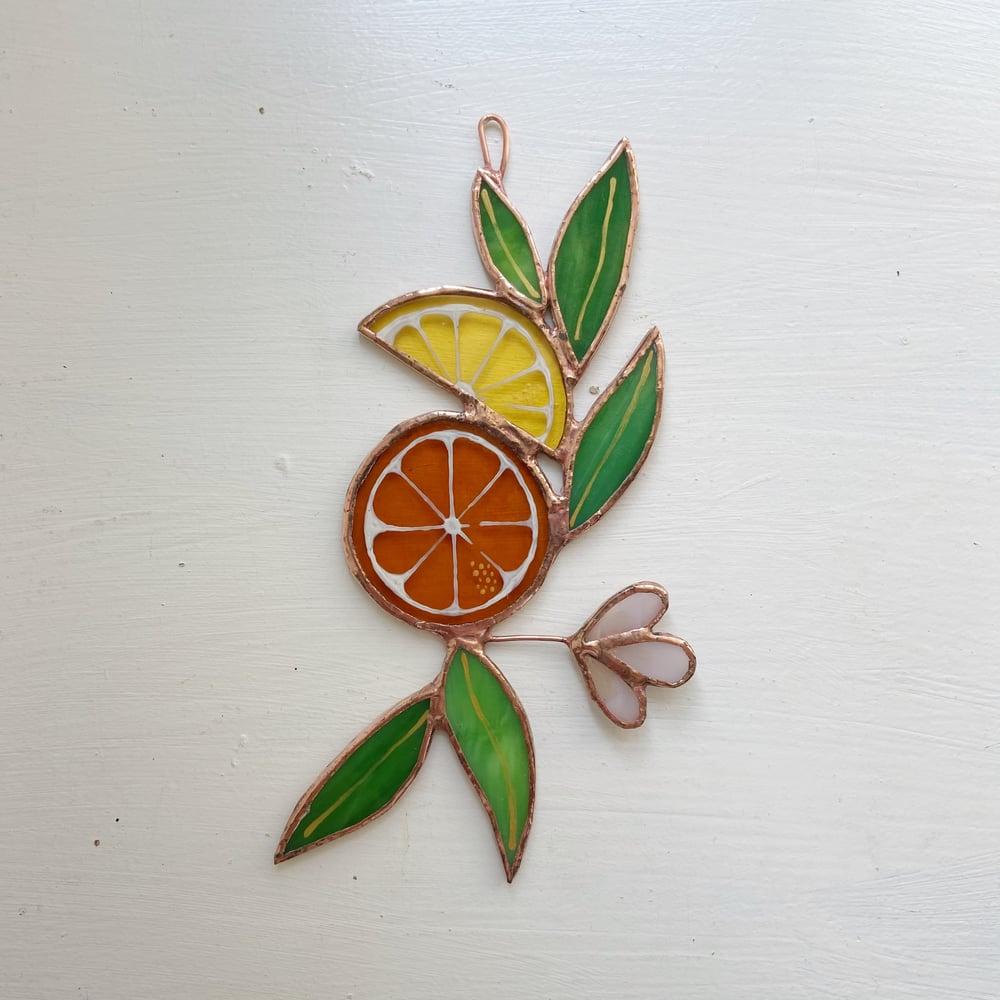 Image of Citrus no.2 - ABJ x BreatheLiveExplore