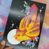Pride Colours; Gay Galah Bird & Gauras Postcard