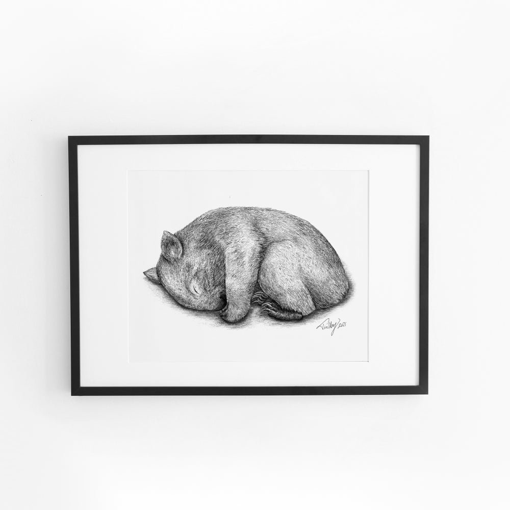 Image of Sleepy Wombat
