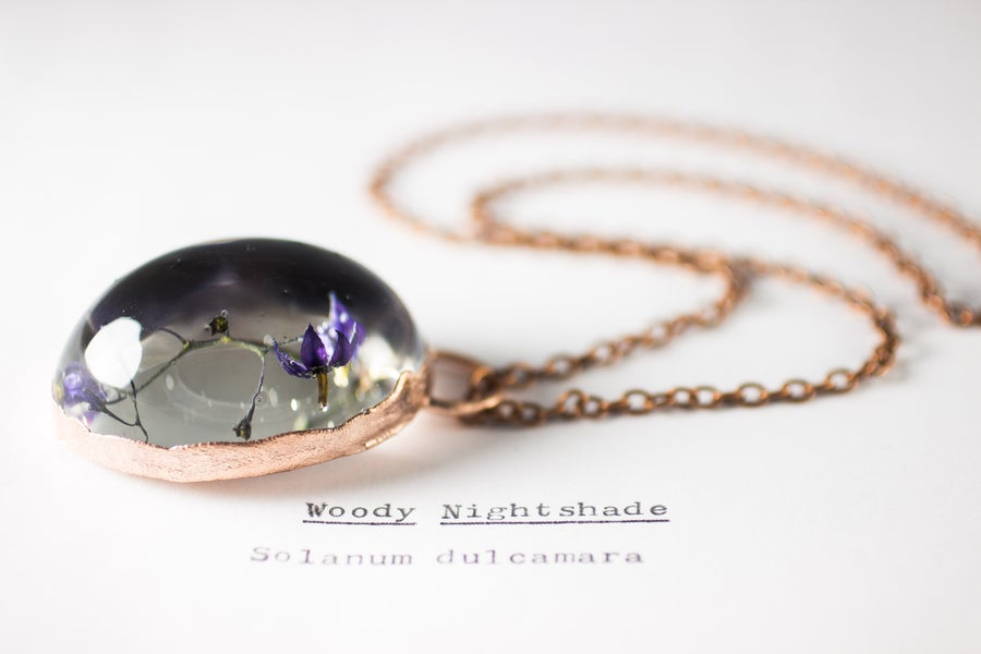 Image of Woody Nightshade (Solanum dulcamara) - Copper Plated Necklace #3