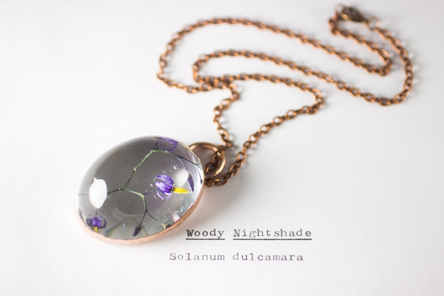 Image of Woody Nightshade (Solanum dulcamara) - Copper Plated Necklace #5