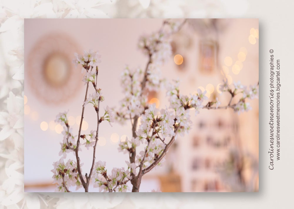 Image of Spring inside | carte postale