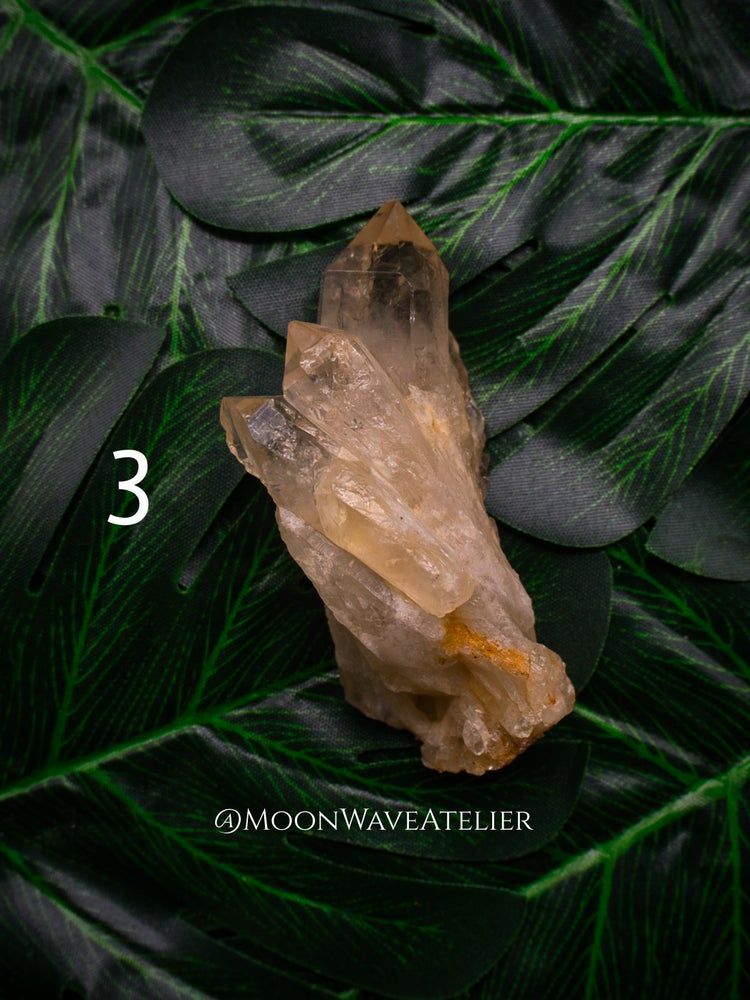 Image of Cascading Citrine Points