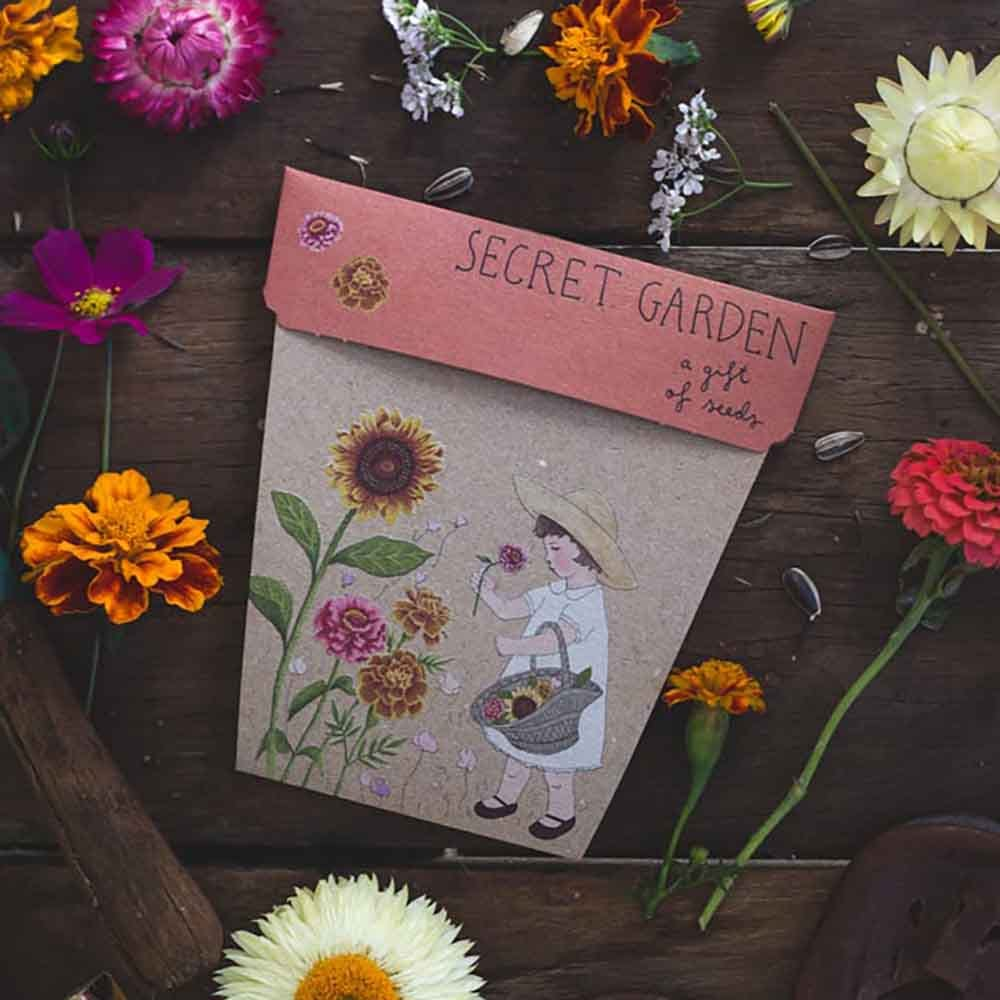 Image of Flower Seed Greeting Cards