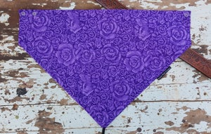 Image of Purple Roses in Ashleigh Design