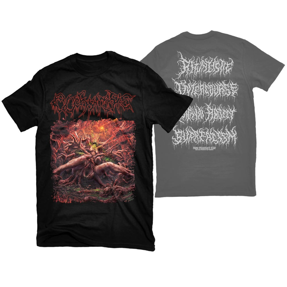 "Image of ECCHYMOSIS ""RITUALISTIC INTERCOURSE"" T-SHIRT"