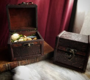 Image of Curiousity Collection - Altar Chest