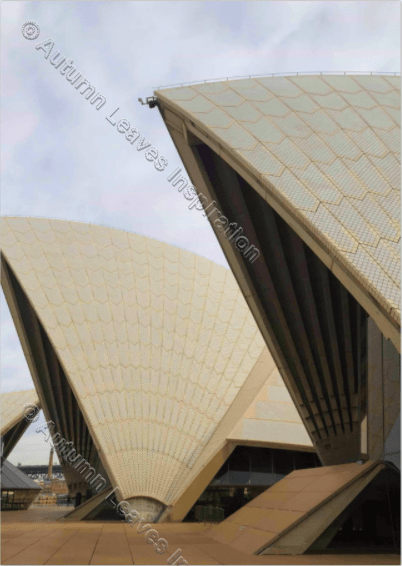 Image of T33 Sydney Opera House - NEW!
