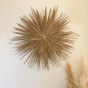 Image of Juju hat palmier