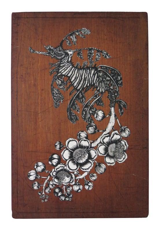 Image of Flowery Sea Dragon