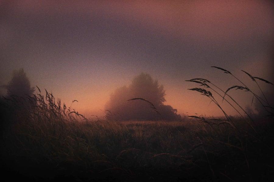 Image of Loner.