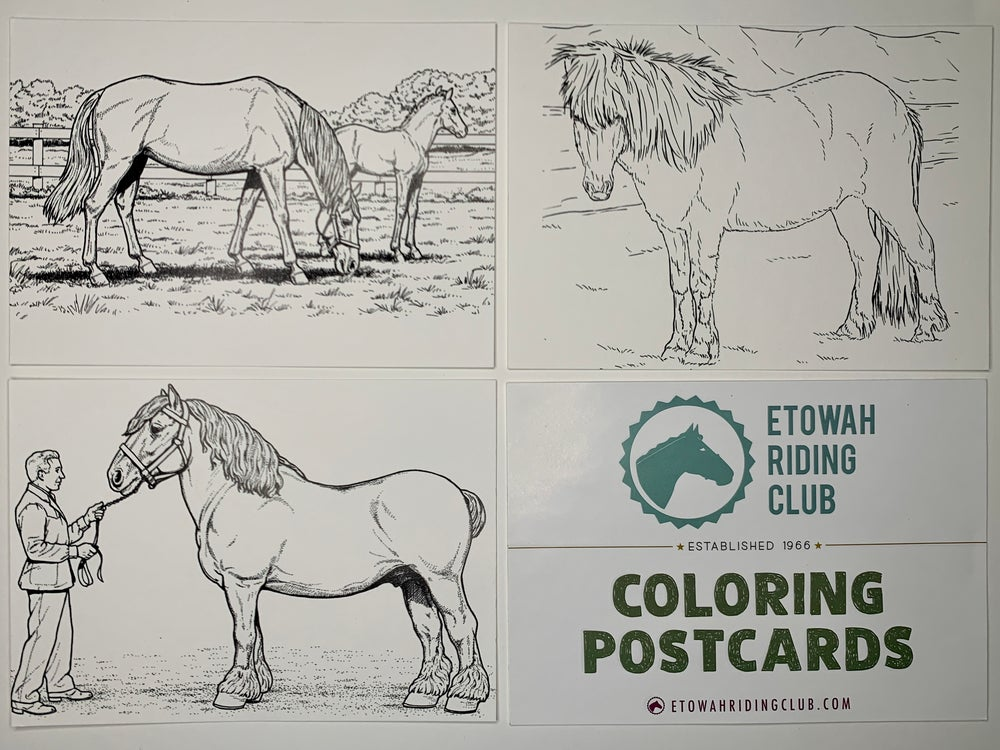 ETOWAH RIDING CLUB: POSTCARD PACK