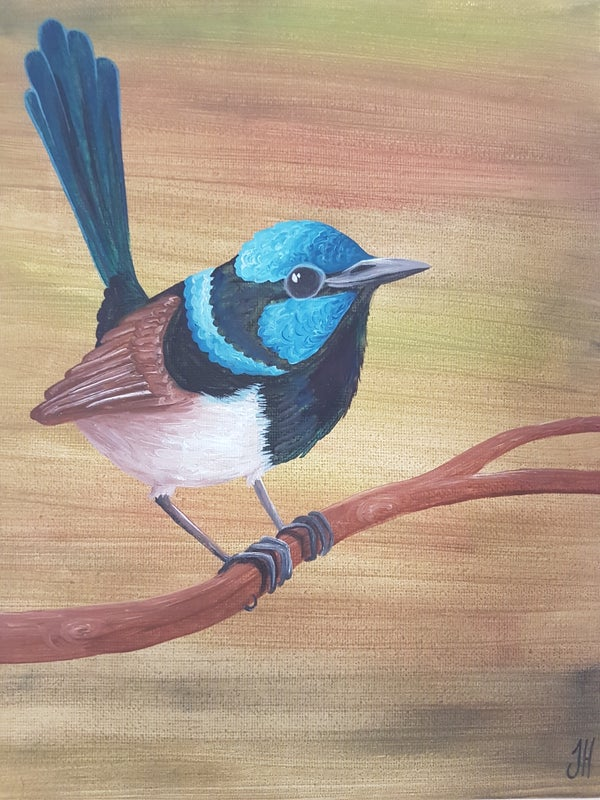 Image of Fairywren Original Painting