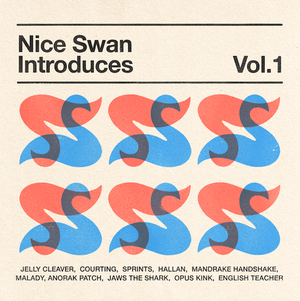 """Image of Nice Swan Introduces Volume I 12"""""""