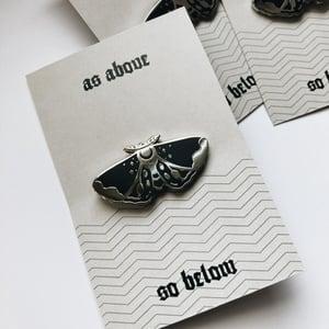 Image of Moth Pin