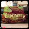 """Evergrey """"The Atlantic"""" Cozy Blanket"""