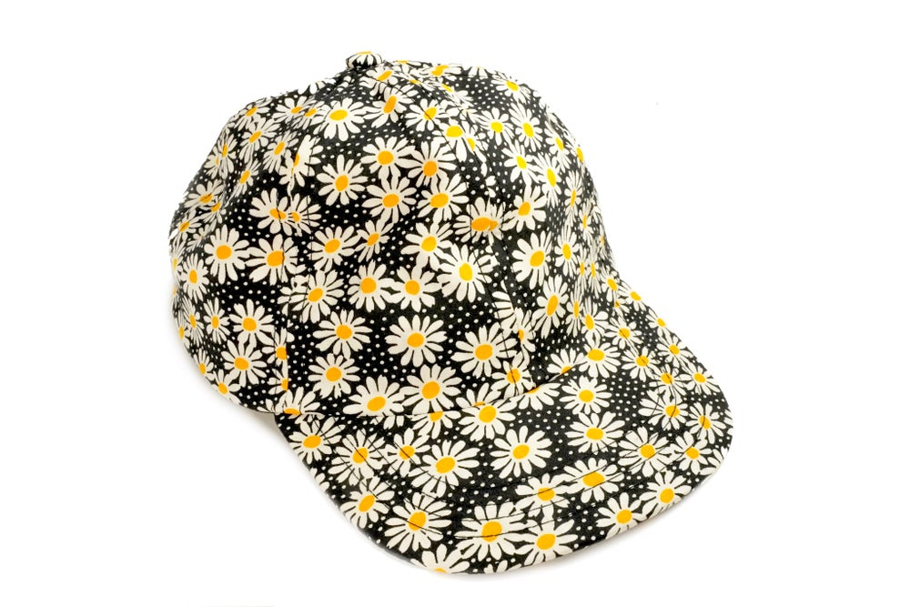 Image of Classic Daisies!