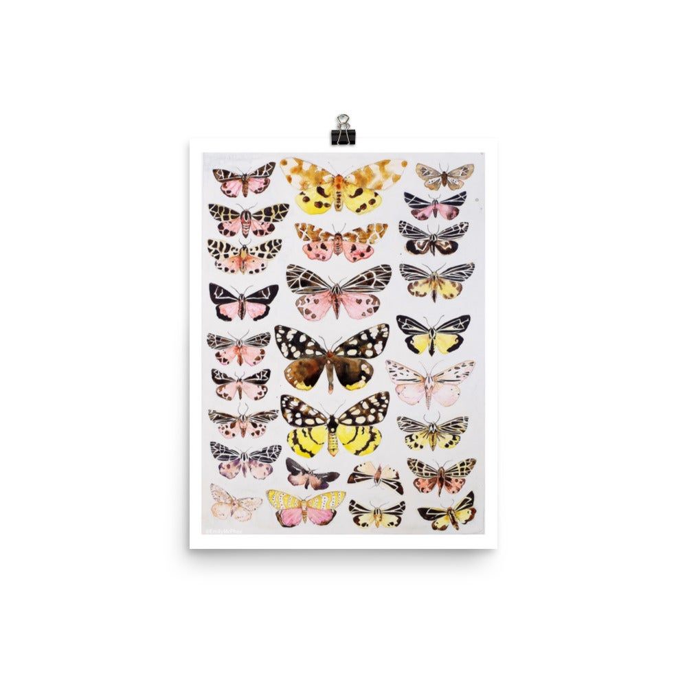 Image of Moths - Fine Art Print