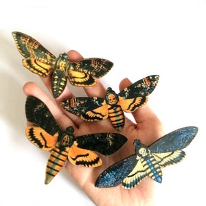 Image of Large Death's-Head Hawkmoth Wooden Brooch Pin - Assorted