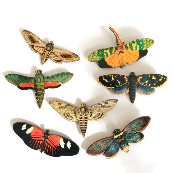 Image of Large Insect Wooden Brooch Pin - Assorted