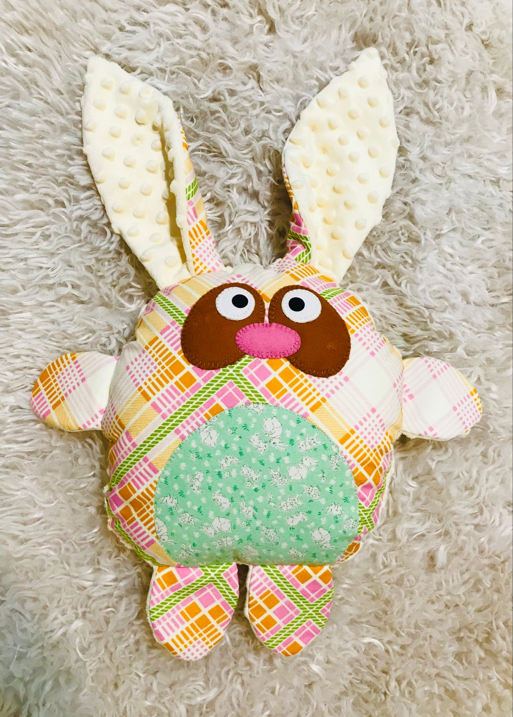 Image of Checkers the Funny Bunny