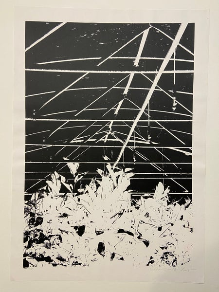 Image of Astro polytunnel (2016) by Charlie Evaristo-Boyce